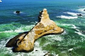 Paracas Coastline Greg Mortimer