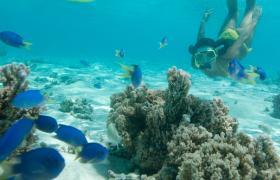 Activities Cook Islands