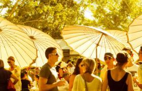 Festivals feature